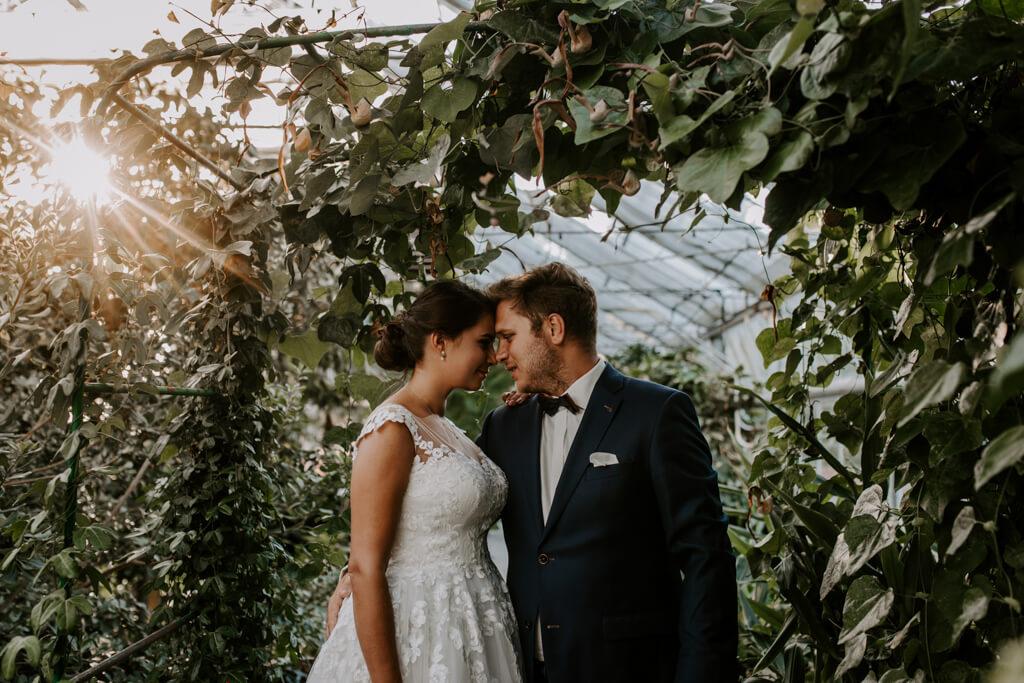 Sesja ślubna w ogrodzie botanicznym (17)