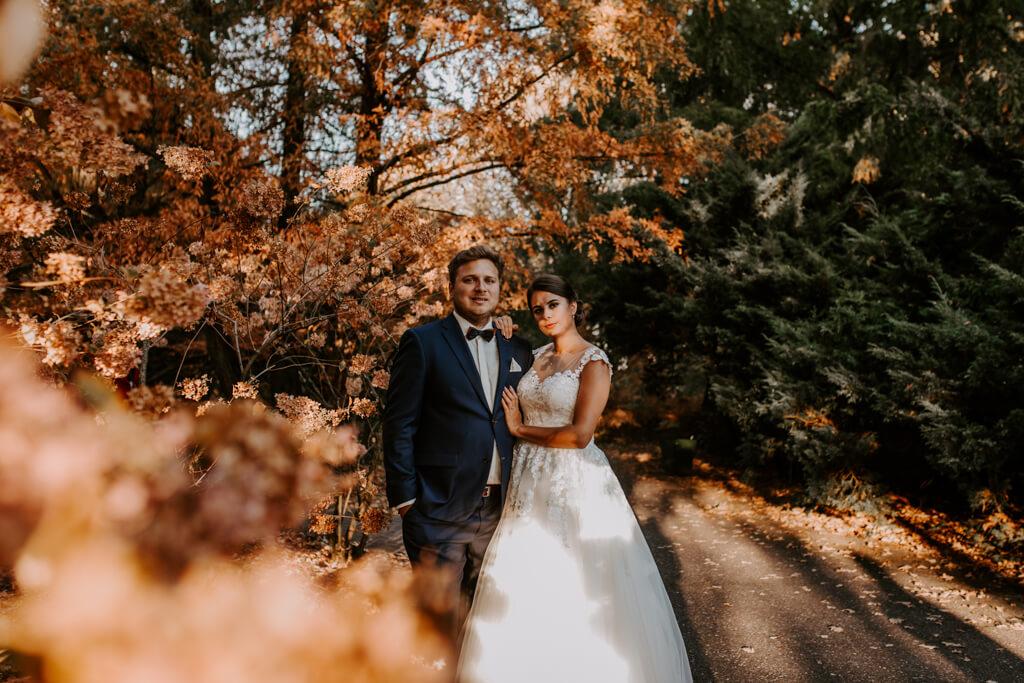 Sesja ślubna w powsinie (3)