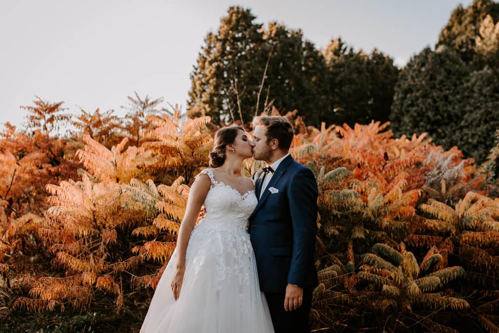 Sesja ślubna w powsinie (7)