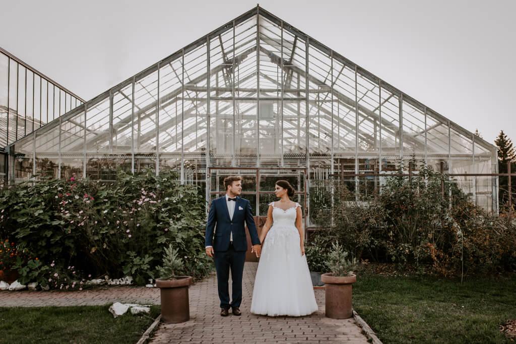 Sesja ślubna w szklarni w Powsinie (1)