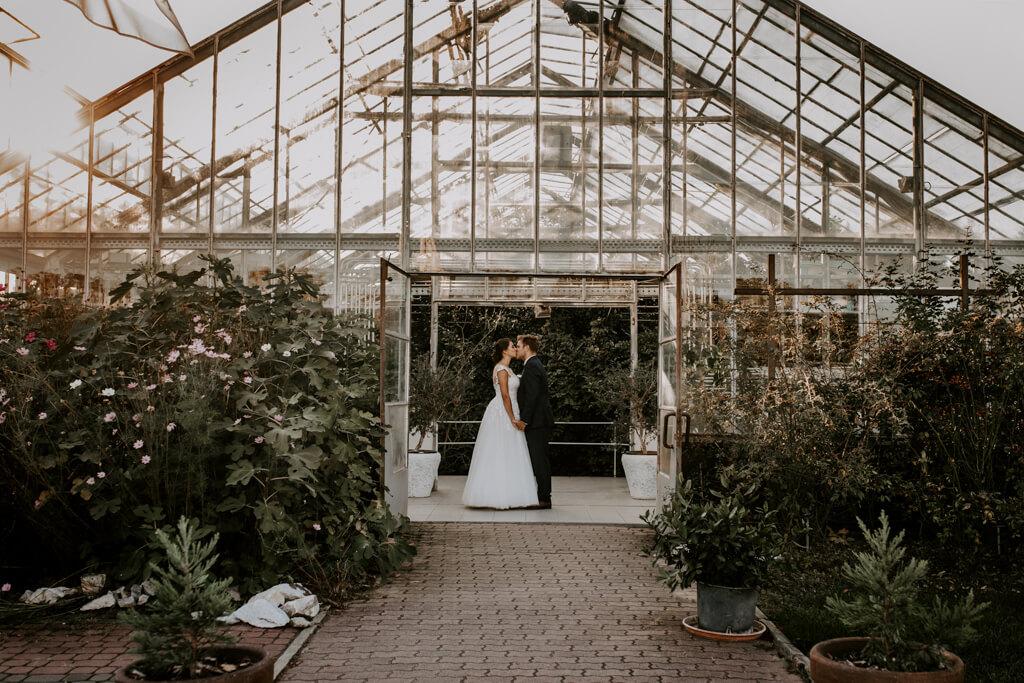 Sesja ślubna w szklarni w Powsinie (4)
